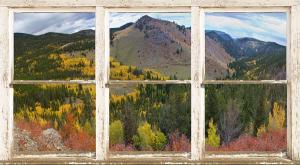 For Immediate Release New Picture Windows Fine Art With A View